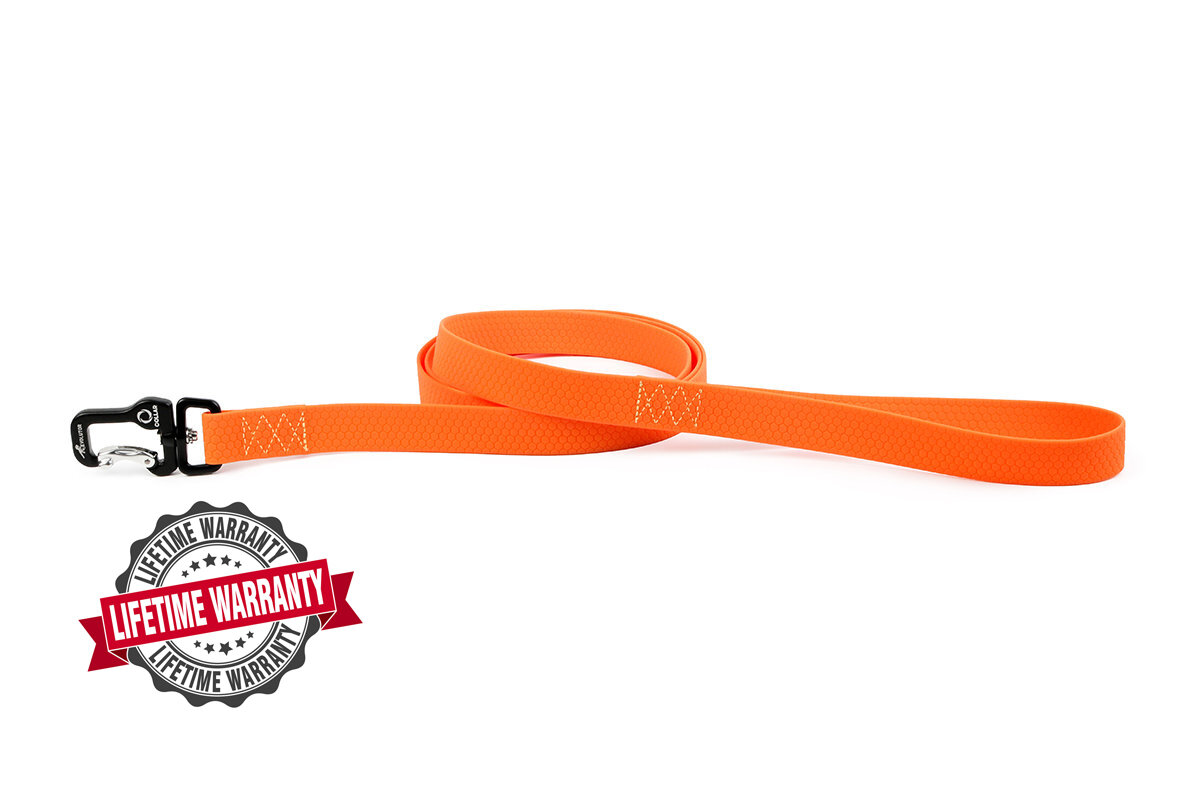 Leash COLLAR EVOLUTOR 120 cm (4 ft) (L), 25 mm (1 in) (W) - the most durable leash!