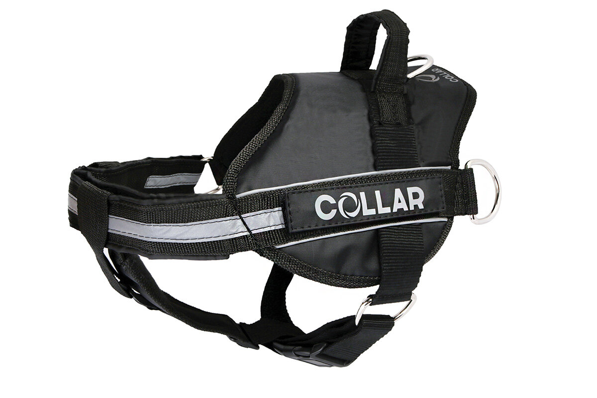 Harness DogExtremе Police N4 with replaceable stickers 70-100 cm Black (with flashlight)