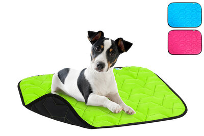 Ultra light dog mat AiryVest