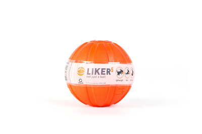Liker 5 - a ball for puppies and dogs of small breeds