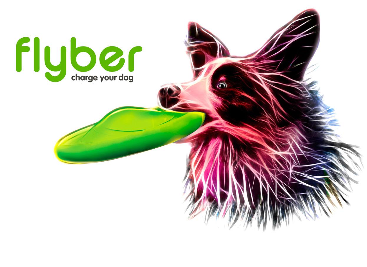 https://www.bycollar.com/media/wysiwyg/flyber/flyber-main-en.jpg
